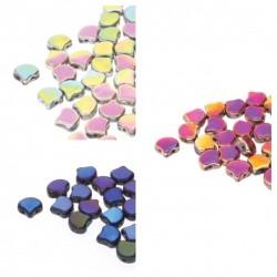 Set Ginko n. 4 Colori Full Coating - 1 set