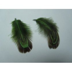 Piuma  4-5 cm  Verde/Tortora   - 1 pz