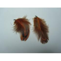 Piuma  4-5 cm  Arancione/Tortora   - 1 pz