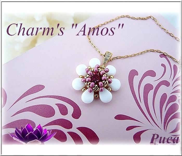 Charms-Amos-Puca.jpg